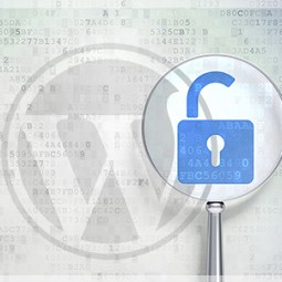 WordPress Denial of Service Attacks